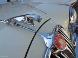 macchina jaguar